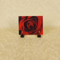 plaque résine rose rouge